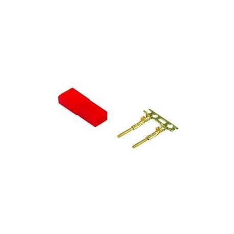Jamara Connettore BEC MASCHIO Gold (art. 091107)