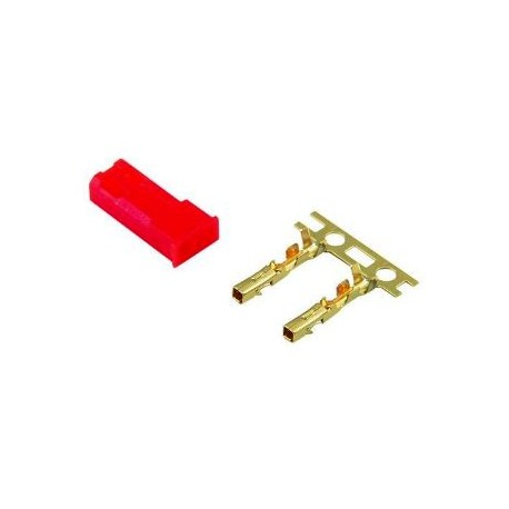 Jamara Connettore BEC FEMMINA Gold (art. 091108)