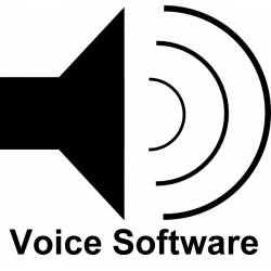 Robitronic RCM Voice Software per Lap Counter (art. RS169)