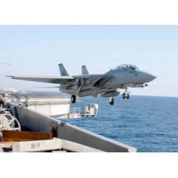Tamiya US Grumman F-14D TOMCAT scala 1/48 (art. TA61118)