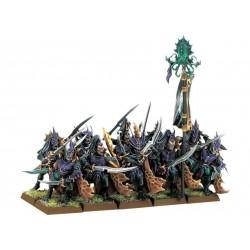 Warhammer Elfi Oscuri Corsari dell'Arca Nera (99120212003)